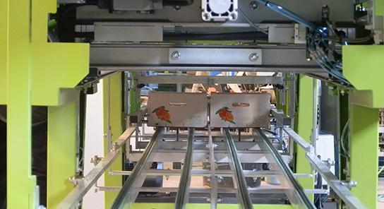Encajadora automatica de fruta alto rendimiento 08