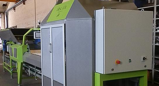 Encajadora automatica de fruta alto rendimiento 4
