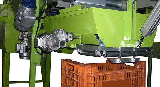 MG Modulo de granel para encajadora automatica de fruta 13