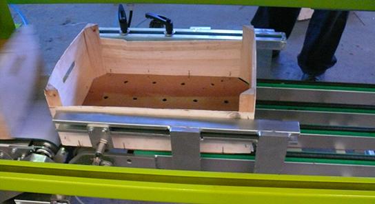 MG Modulo de granel para encajadora automatica de fruta 7